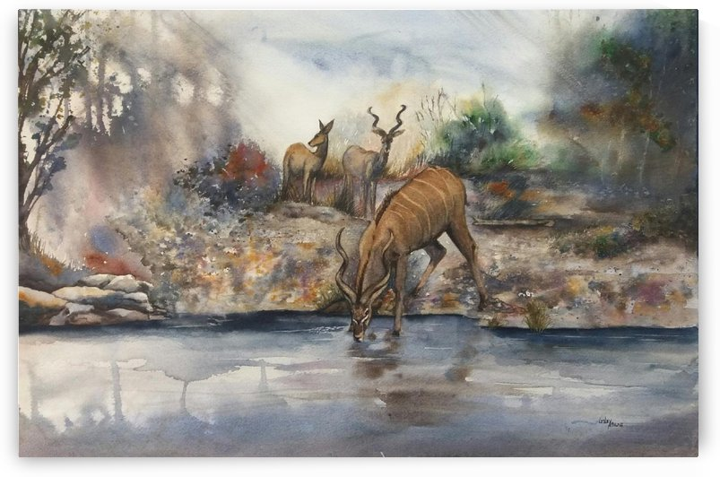 Kudu at the river by Lesley Milne
