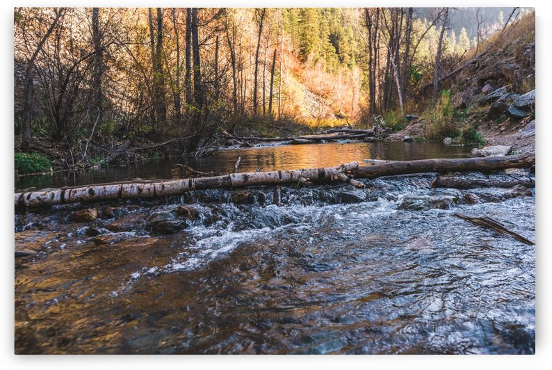 Log Block Creek by Bret Leininger