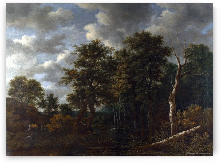 A Pool surrounded by Trees by Jacob Van Ruisdael