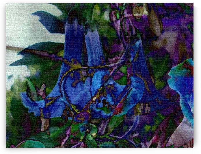 Blue Bells by Violet