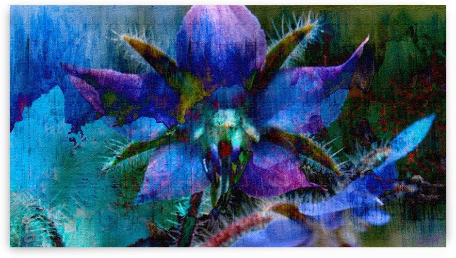 Exoticados by Violet