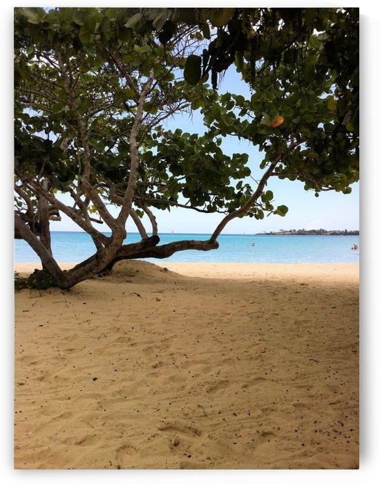 Beach6 by Jodi Webber