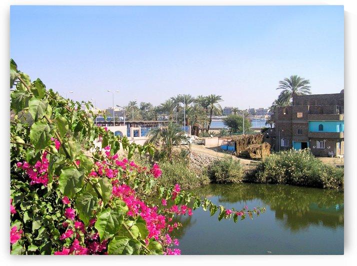 Egypt16 by Jodi Webber