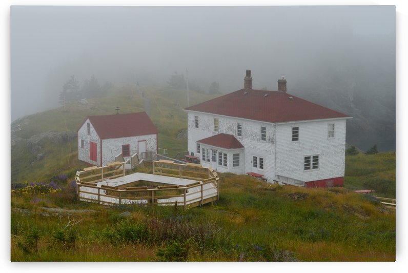 Fog Shroud by Roger W  Marshall