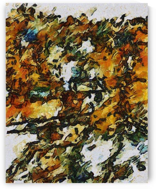 Sunflowers field by zygmunt raszkowski