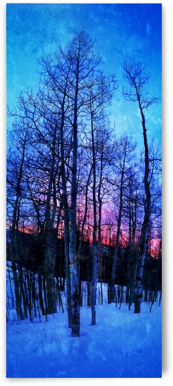 Winter Trees by Mike D Lewis