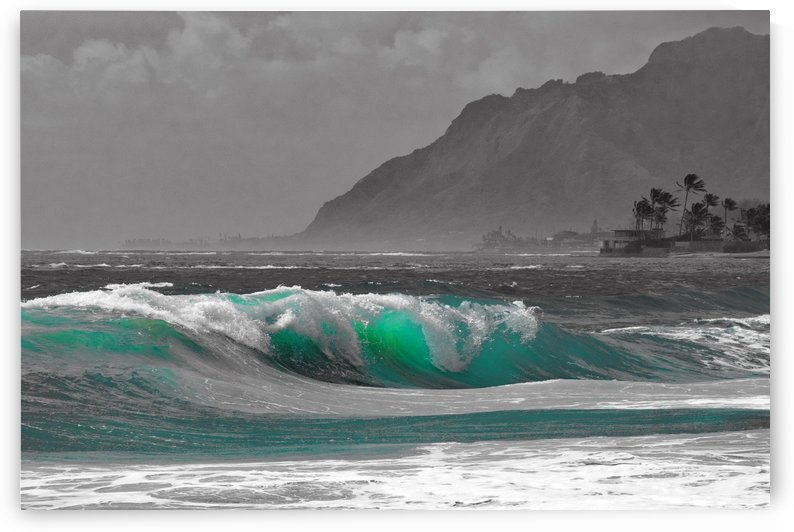 Wave Dynasty by Asia Visions Photography