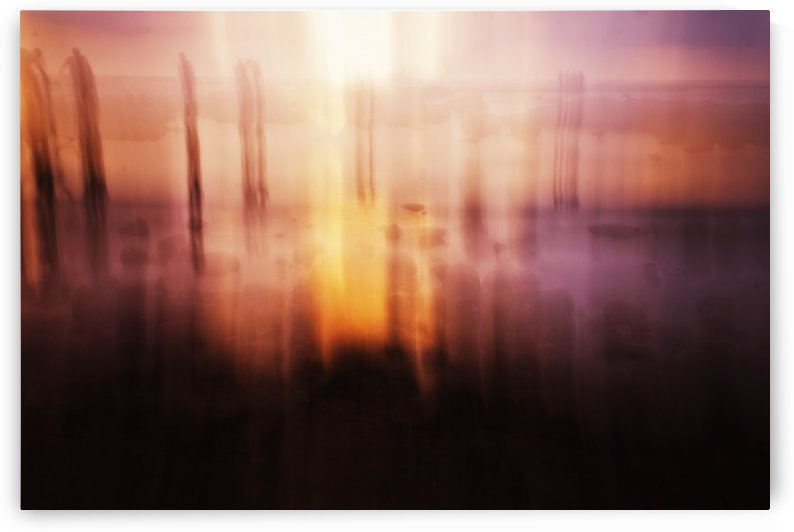 Dream blur 1 by Vishal Tomar