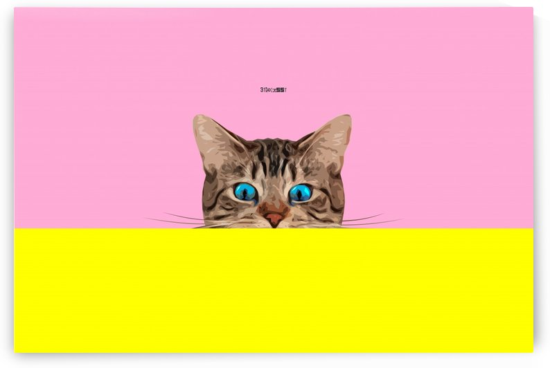 Blue Eyes Cat by zelko radic bfvrp