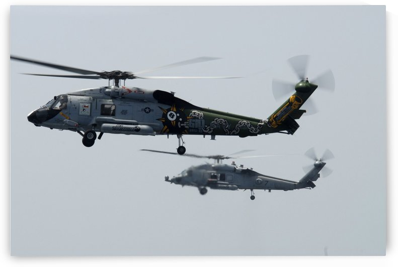 An SH-60F and HH-60H Seahawk helicopter in flight. by StocktrekImages