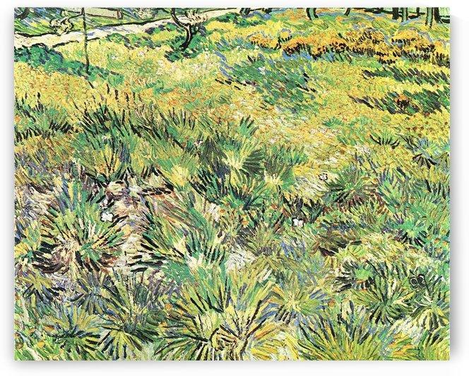 Meadow in the Garden of Saint-Paul Hospital by Van Gogh by Van Gogh