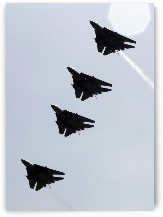 Four F-14D Tomcats in flight. by StocktrekImages