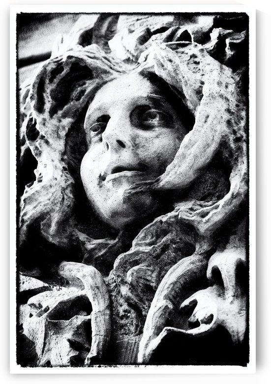 Stone Face by Trish Hamilton