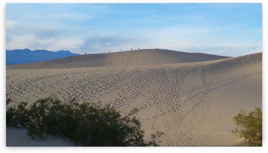 dune by romain