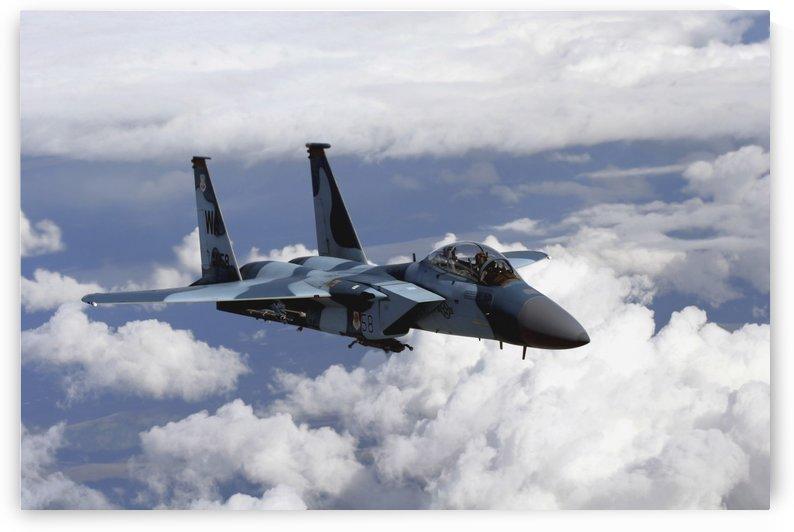 An F-15C Aggressor flies over a mountain range. by StocktrekImages