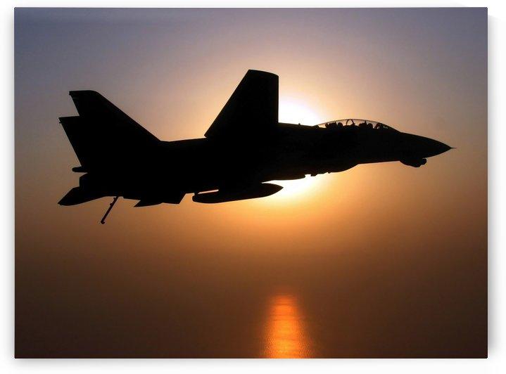 An F-14D Tomcat in flight. by StocktrekImages
