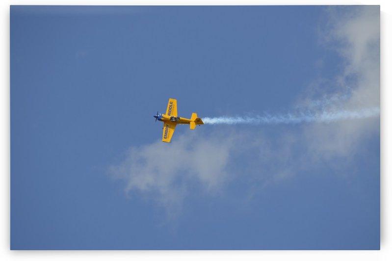 A Mudry CAP-231EX aerobatic aircraft. by StocktrekImages