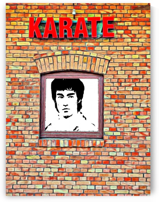 BruceLee style KungFu school wall by CiddiBiri