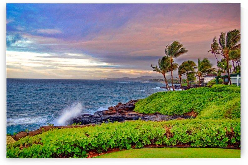 Kauai Poipu by Pamela Winter