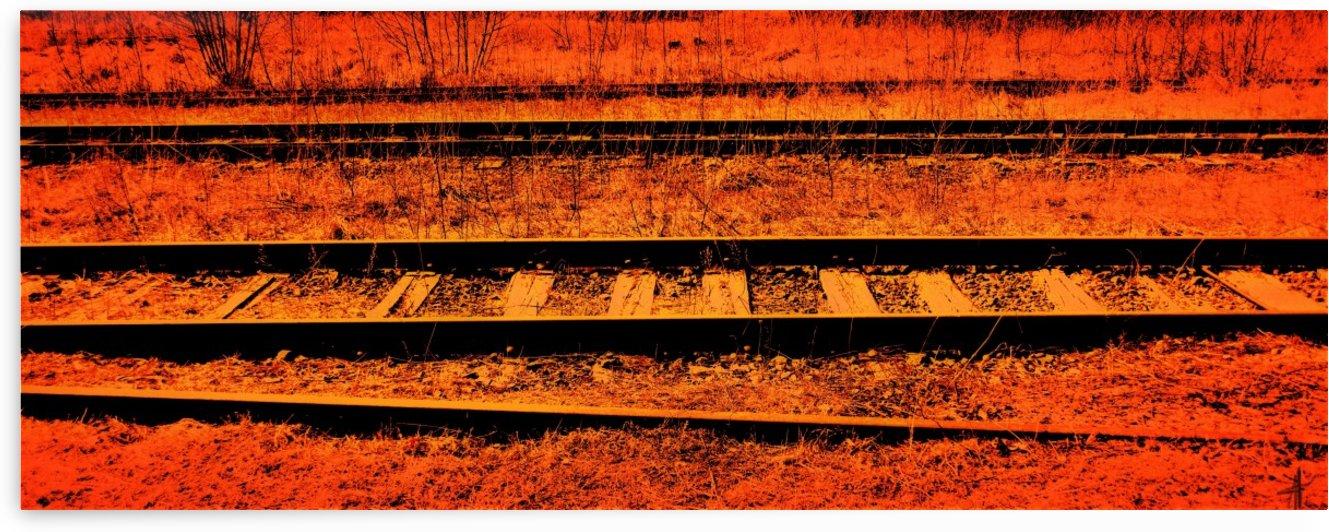 train tracks by Anu Hamburg