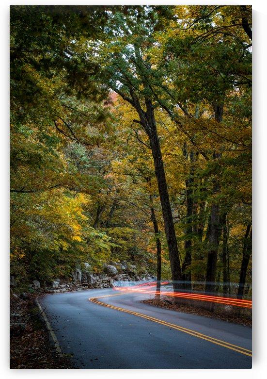 Slow Lane by Stan Reese