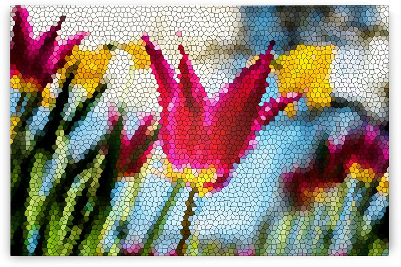 Tulip Mosaic by Busybee-CR Photography