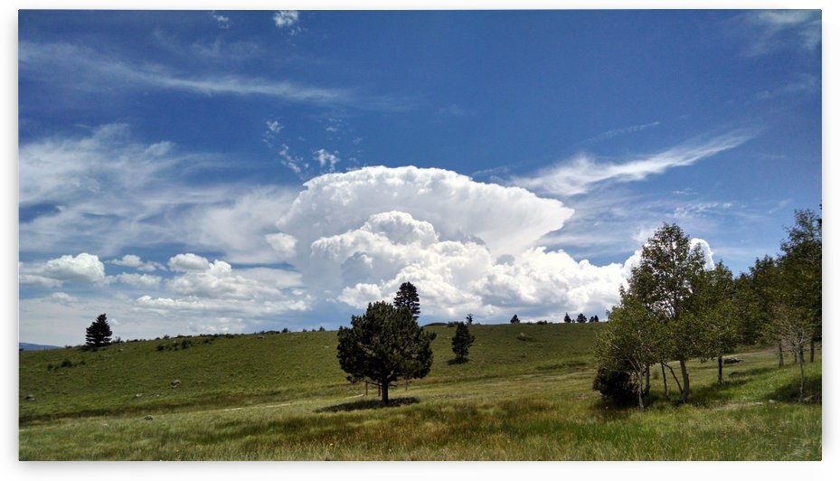Thunderhead At Noon by Matthew Ulisse