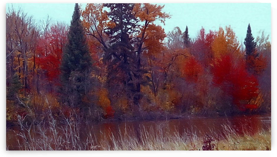 Along the River Bank 2  img7796 by Bev Snider