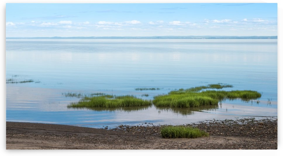 Low Tide - Maree Basse by Carole Ledoux Photography