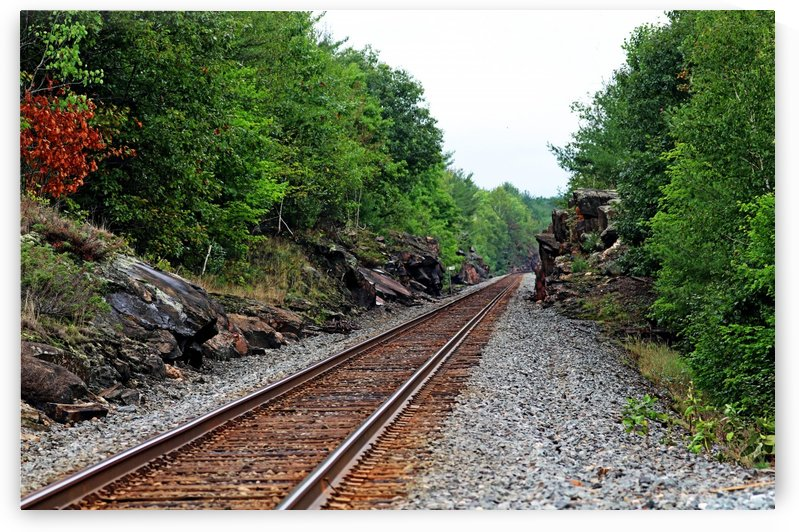 CPR Tracks At Pointe Au Baril I by Deb Oppermann