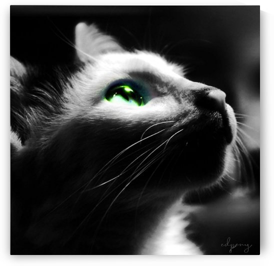 Green Eyes by Otradus