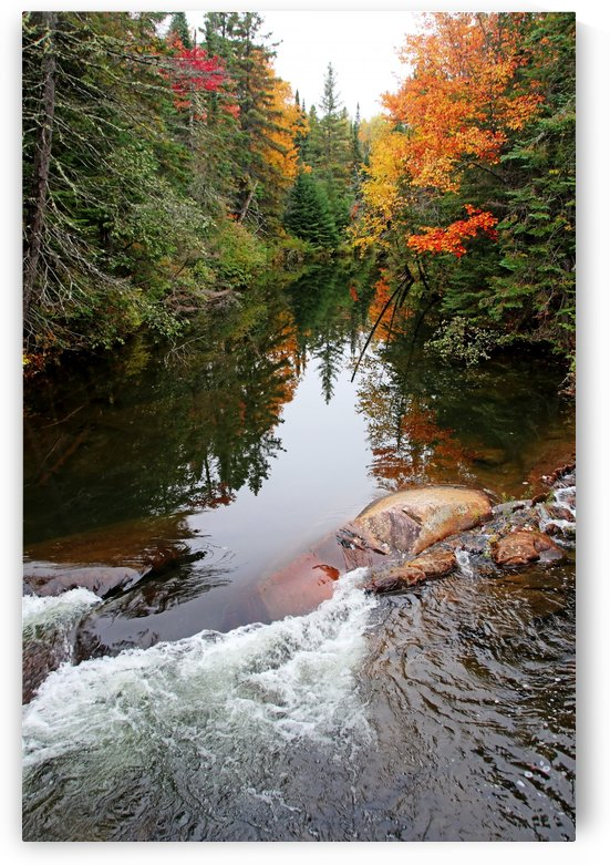 Chikanishing River In Autumn I by Deb Oppermann