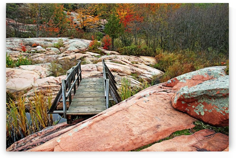 Chikanishing Trail Boardwalk I by Deb Oppermann