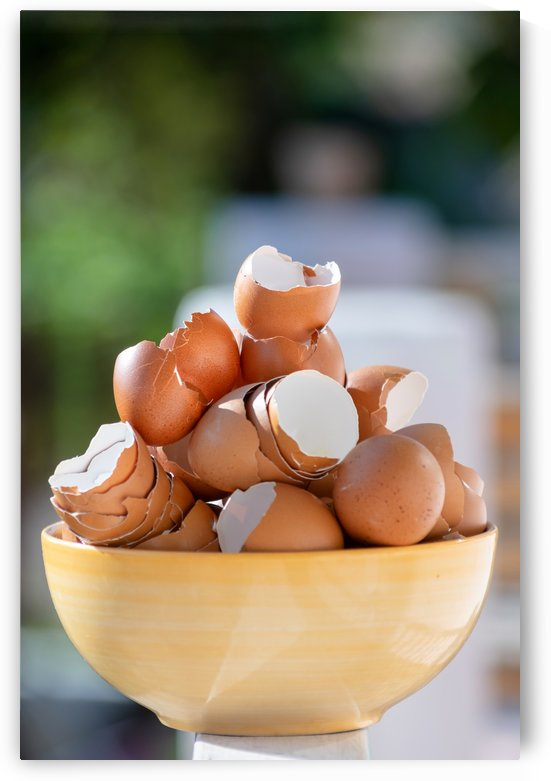 Eggshells in bowl by Krit of Studio OMG