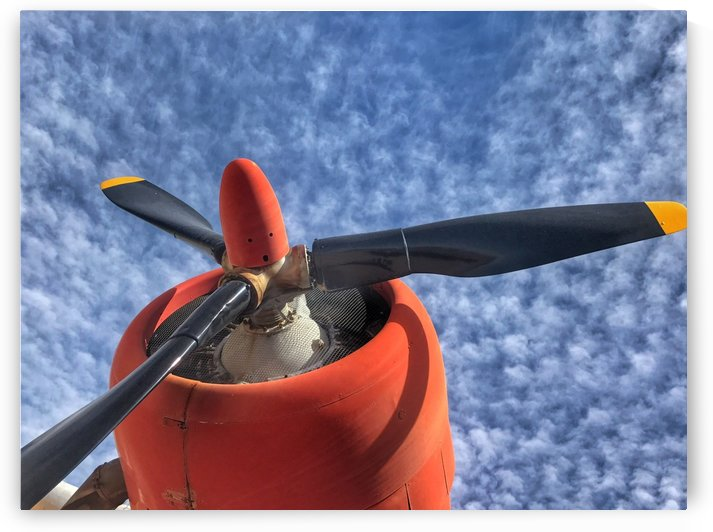 Classic aviation by Roxy S