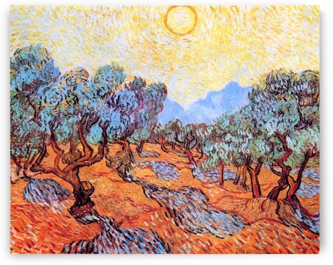 Olive Grove by Van Gogh by Van Gogh