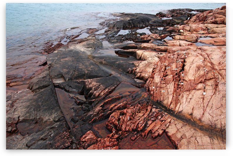Collins Inlet Rocky Shore I by Deb Oppermann