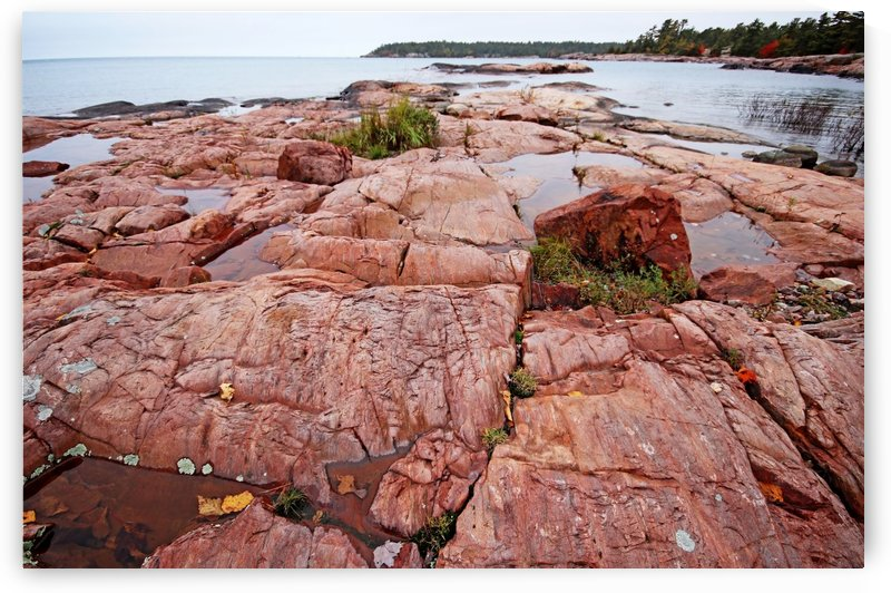 Pink Granite Shore  Killarney by Deb Oppermann