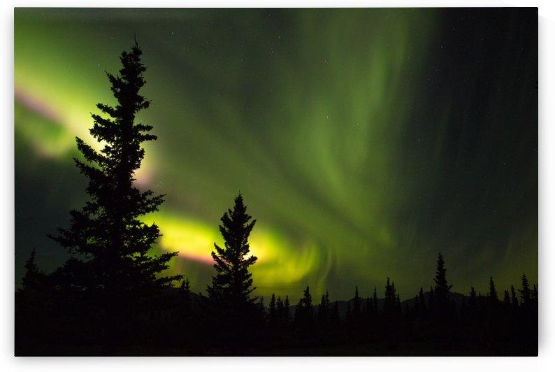 Electric Skies by Stan Reese