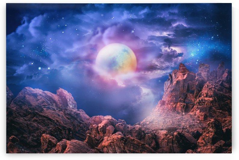 Magic Moon Night by Art Design Works