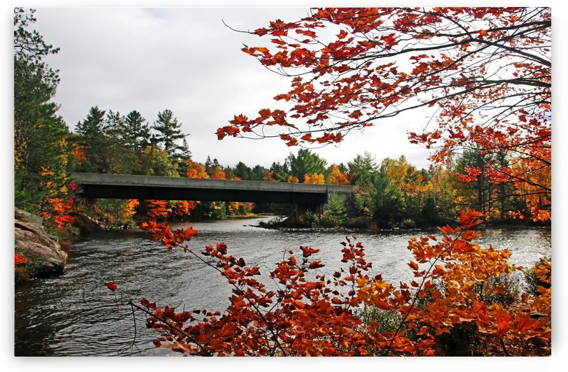 Bridge Over Carlyle Lake by Deb Oppermann