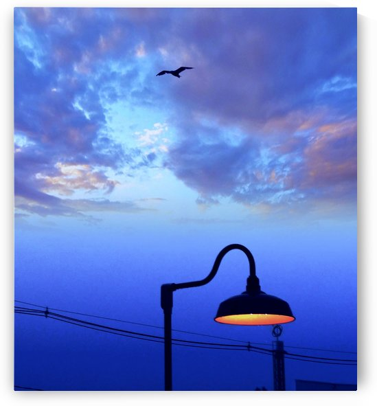 Boardwalk Light Post by Randall Ledbetter