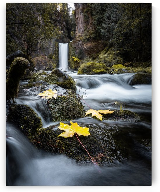 Toketee Falls Fall by Steve Ronin
