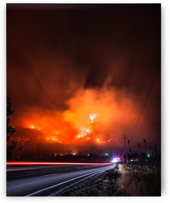 WildFire by Steve Ronin