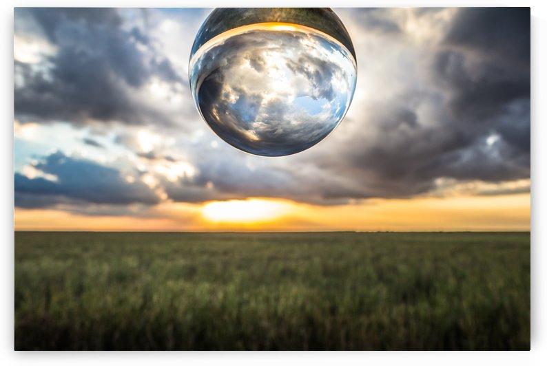 Lens Ball by Danielle Farrell