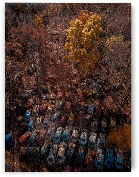 Abandoned Car Graveyard  by Steve Ronin