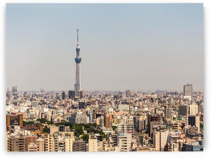 TOKYO 35 by Tom Uhlenberg