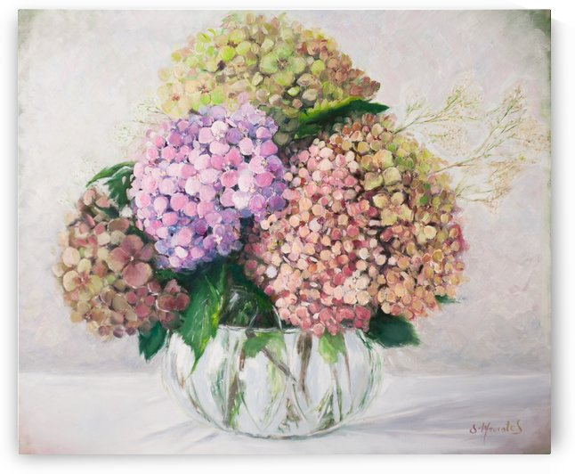 Hydrangeas in vase by Jocelyne maucotel