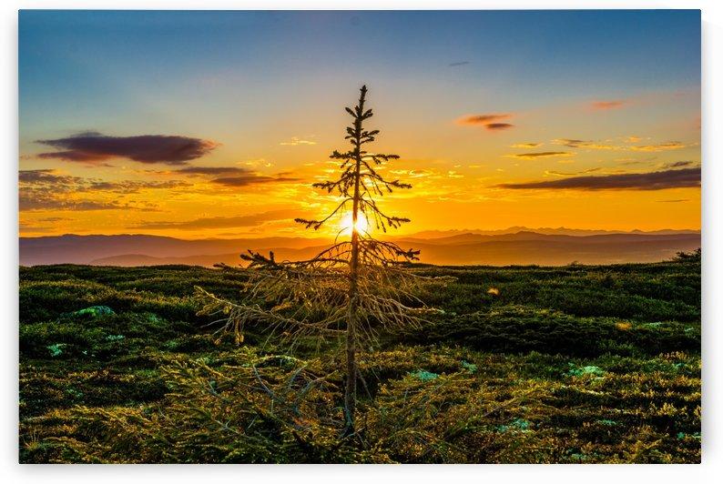 Beautiful Nature Landscape sunrise sunset sun Photography landscape photo Scenery by fabartdesigns