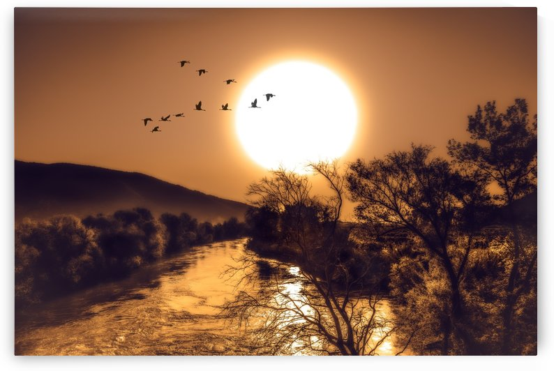 Beautiful Nature Landscape sunrise sunset sun Photography landscape photo Scenery by fabartdesigns
